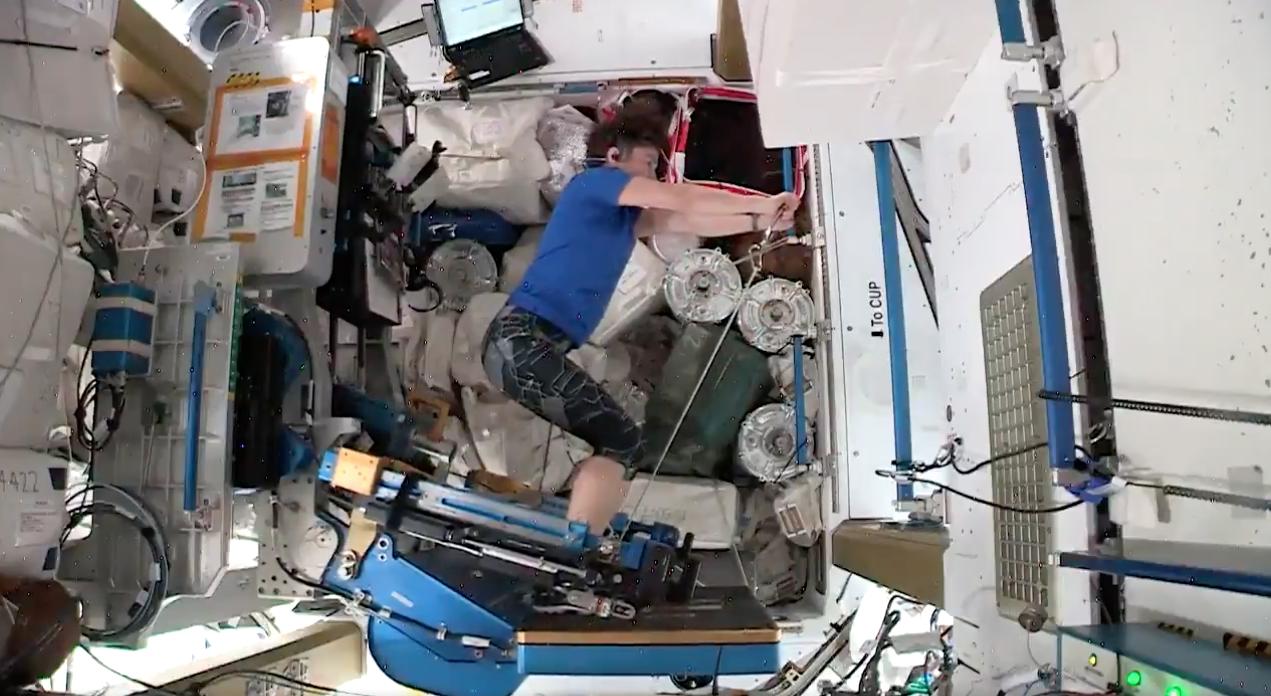 Астронавты НАСА показали, как они тренируются на борту МКС (видео).Вокруг Света. Украина