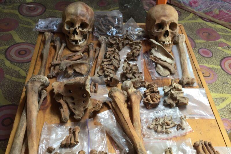 В Монголии нашли скелеты, подтверждающие легенду о Мулан