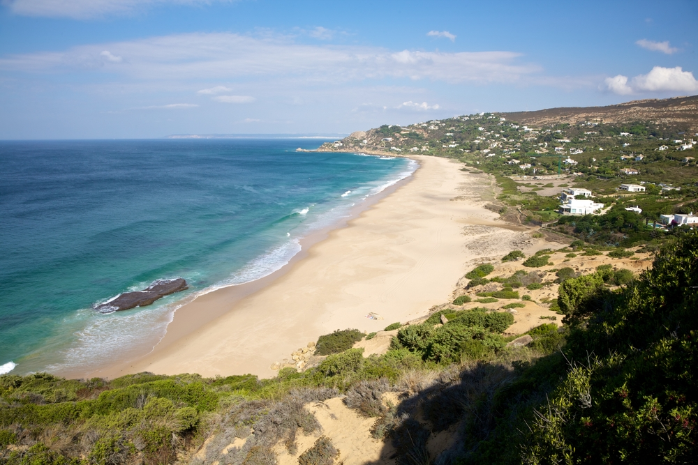 В Испании продезинфицировали пляж и убили все живое