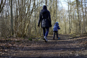 Сезон тиші почався: як поводитися, коли гуляєте в лісі під час карантину