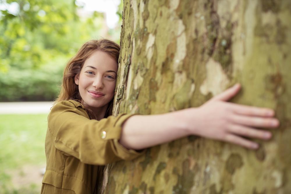 В Исландии советуют обнимать деревья