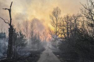Пожары, пылевая буря, смог: почему это происходит