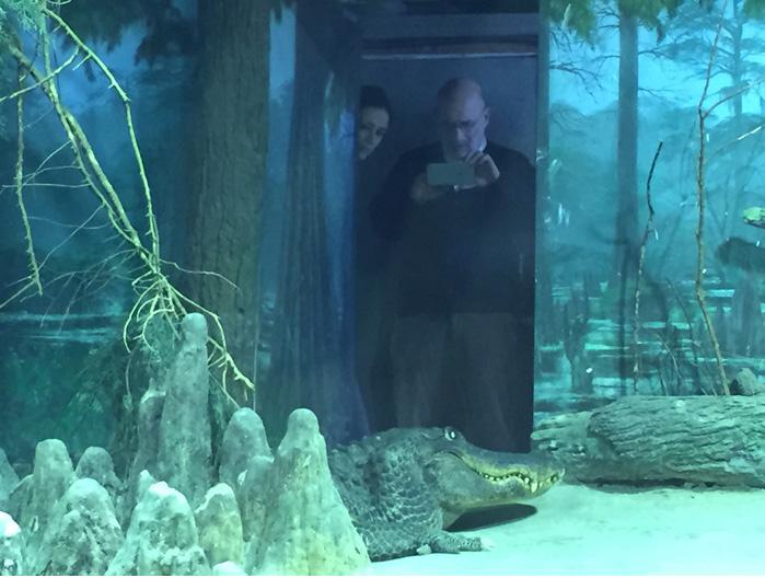В московском зоопарке умер крокодил Гитлера