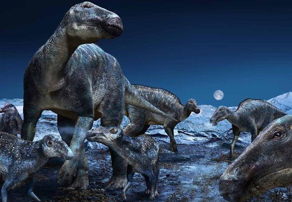 Эдмонтозавры пришли из Азии в Америку и воцарились на Аляске