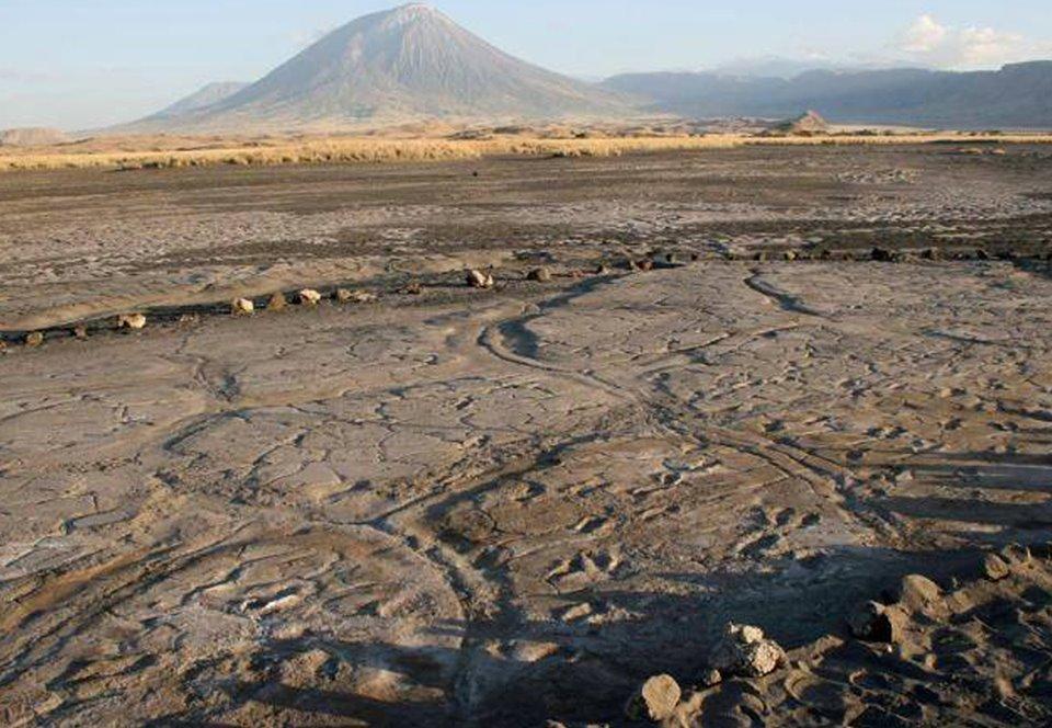 В Танзании найдена самая большая коллекция следов древних людей
