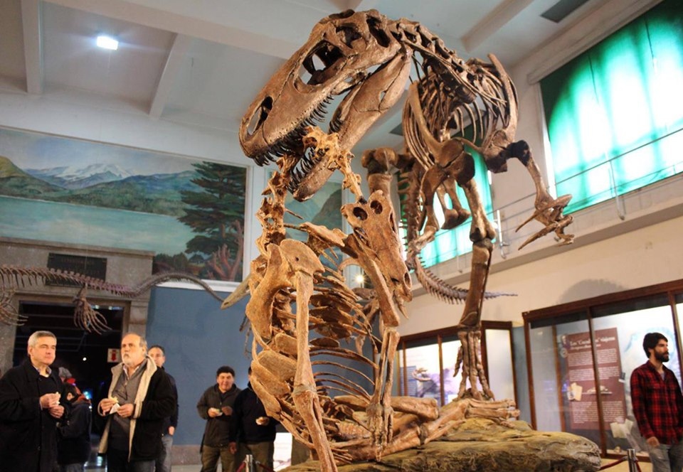 В Аргентине обнаружены останки гигантского мегараптора