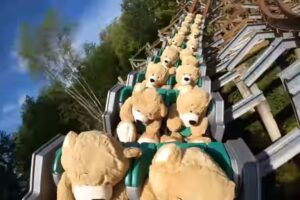 В Нидерландах  22  медведя прокатились  на американских горках