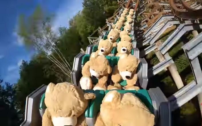 В Нидерландах  22  медведя прокатились  на американских горках.Вокруг Света. Украина