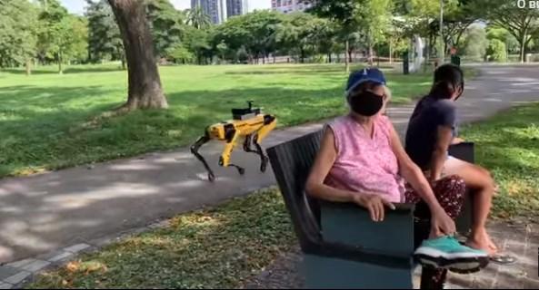 Слоняться запрещено: в Сингапуре роботы патрулируют парки