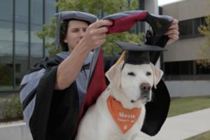 В США собака-терапевт получила звание доктора наук