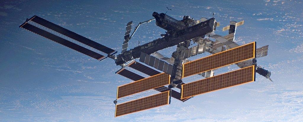 Жизнь на МКС оставляет микробный след на астронавтах