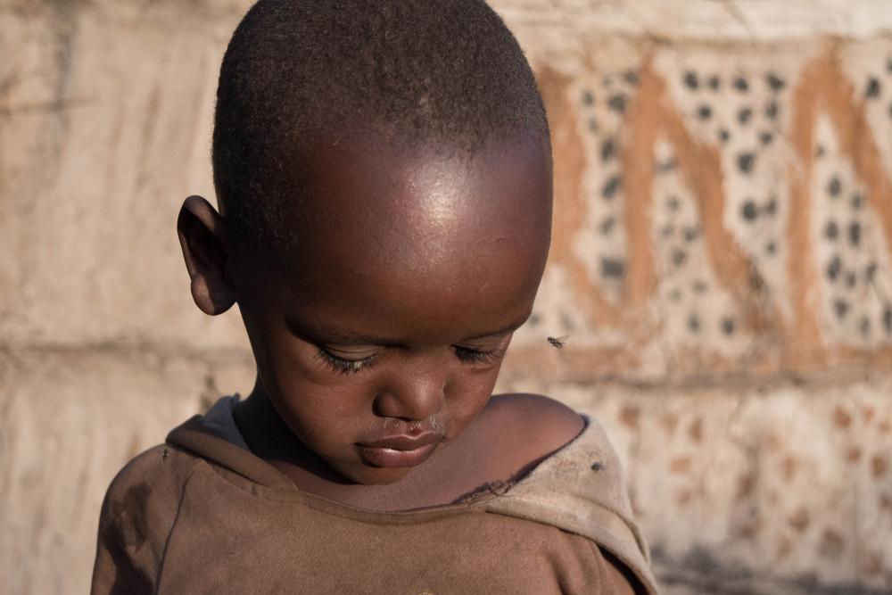 В Африке почти победили сонную болезнь