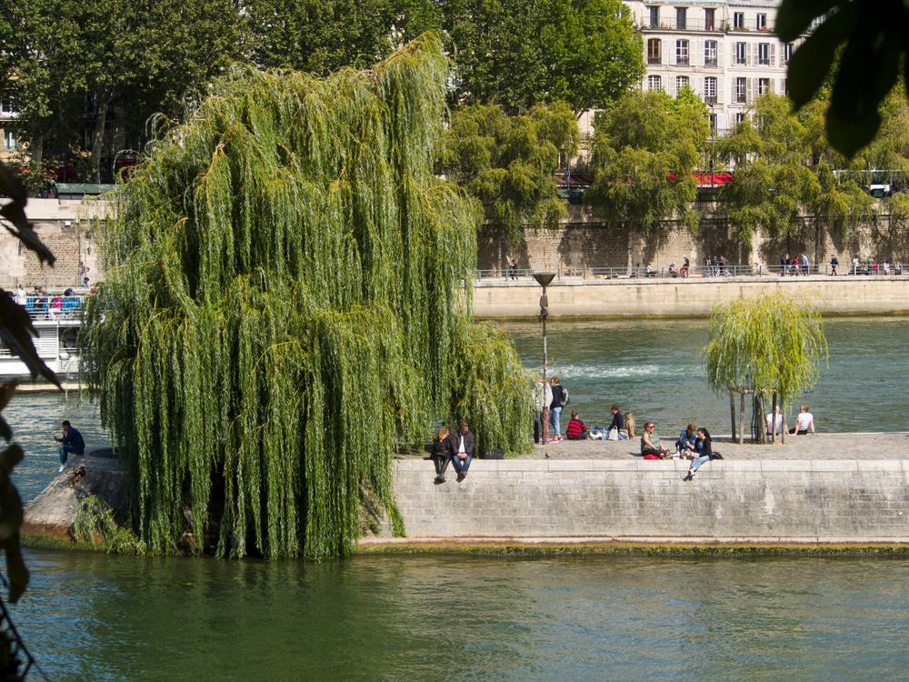 В Париже запретили выпивать на берегах рек и каналов