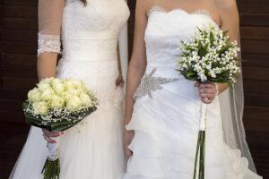 В Коста-Рике легализовали однополые браки