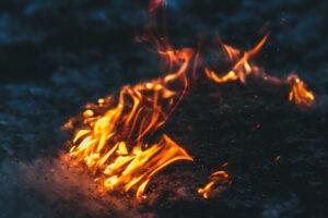 В испанском парке подожгли тополиный пух: вирусное видео