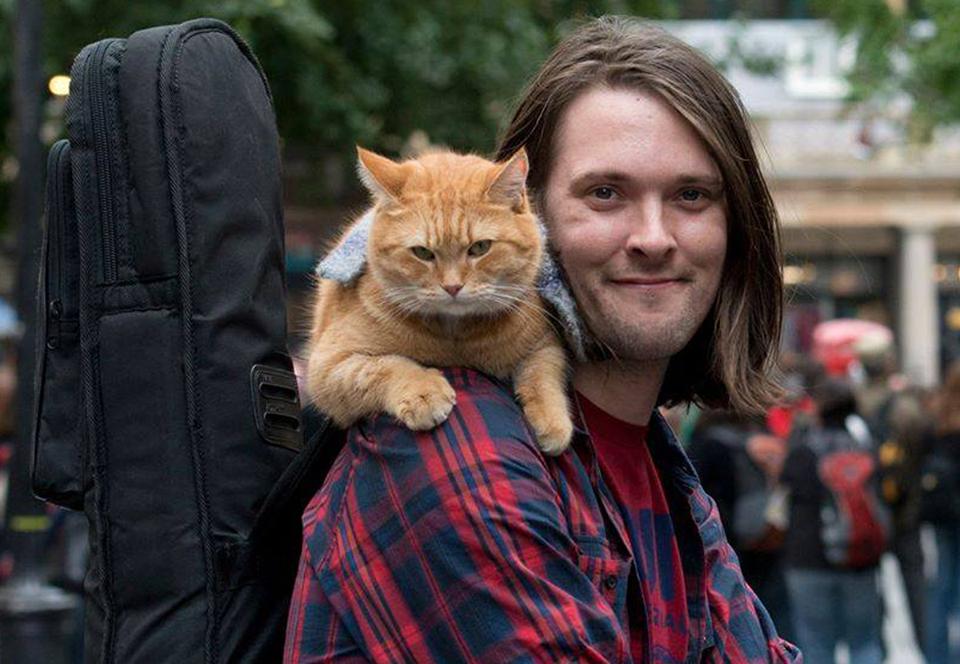 В Лондоне умер кот Боб, избавивший хозяина от наркозависимости