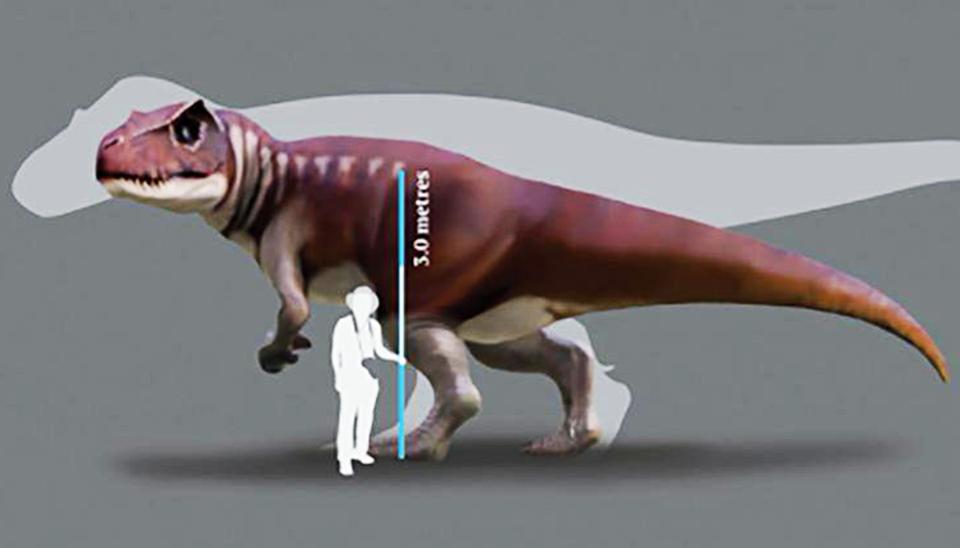В Австралии найдены следы огромных неизвестных динозавров.Вокруг Света. Украина