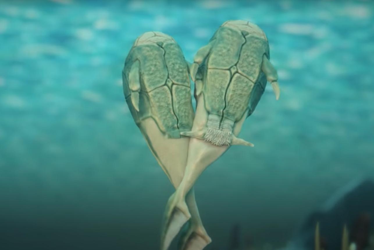 Первый в истории секс случился 400 миллионов лет назад