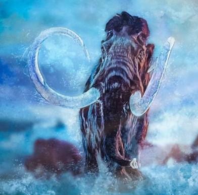Американский онлайн-музей выставил на продажу мясо мамонта.Вокруг Света. Украина