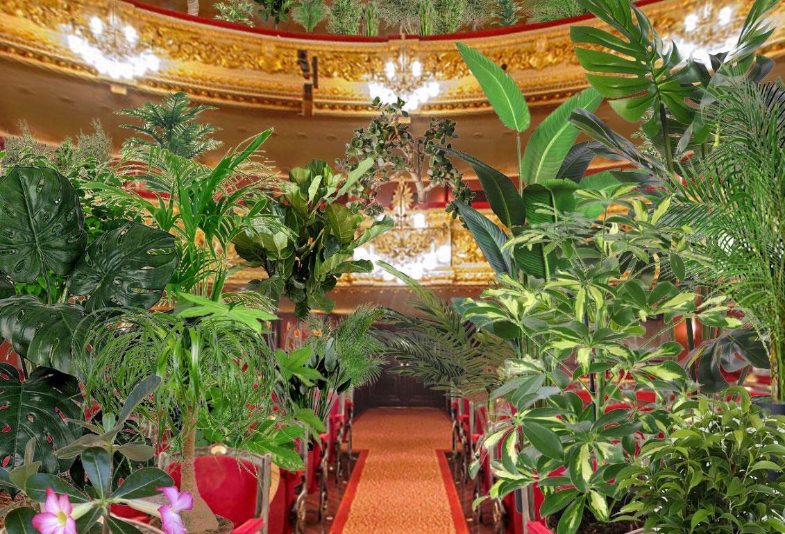 Барселонская опера даст концерт для растений