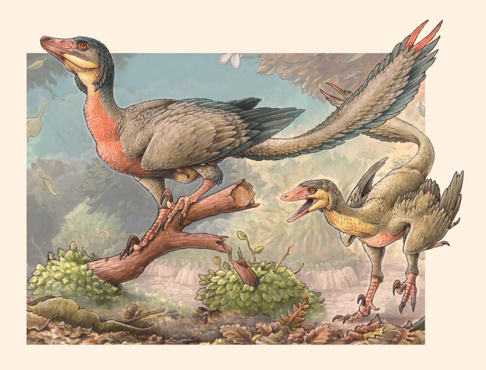В Аргентине открыли новый вид динозавров с руками-крыльями