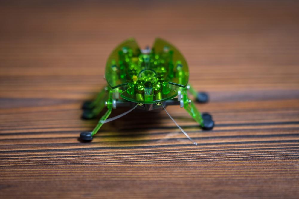 Американские инженеры разработали космических роботов размером с насекомое.Вокруг Света. Украина