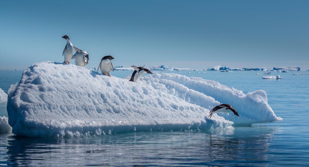 Южный полюс нагревается в три раза быстрее, чем остальная планета