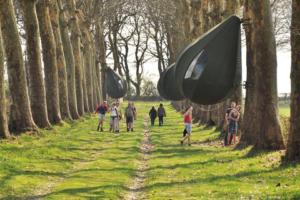 Бельгийцы проводят отпуска в палатках на деревьях
