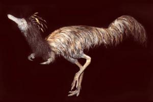 В США обнаружили останки динозавра - лапы с одним когтем