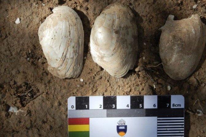 В Австралии обнаружили древнейший обед аборигенов