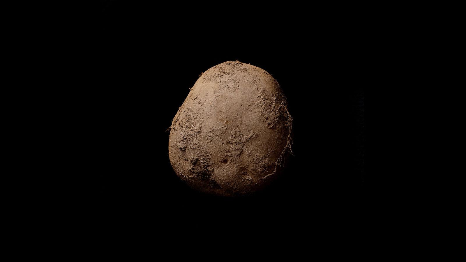 В Британии завершился конкурс на лучшее фото картошки.Вокруг Света. Украина