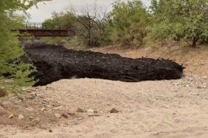 Зловещая черная река потекла в Аризоне после мощных пожаров (видео)