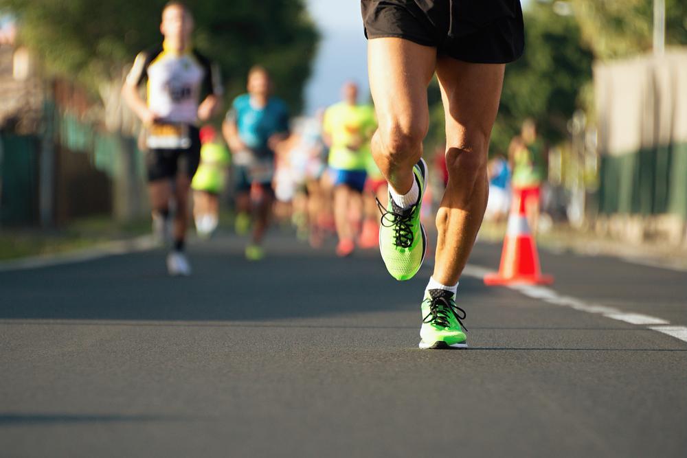 Кто победит в марафонском забеге – животное или человек?.Вокруг Света. Украина