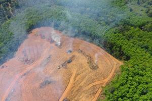 В июне в бразильской Амазонии зафиксирован всплеск лесных пожаров