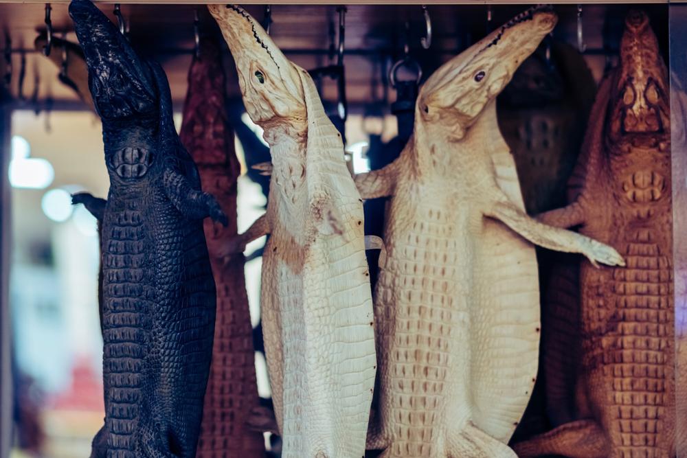 Во Вьетнаме запретили торговлю дикими животными