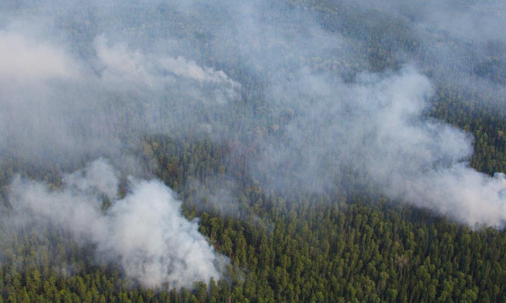 Лесные пожары в Сибири побили антирекорды прошлых лет