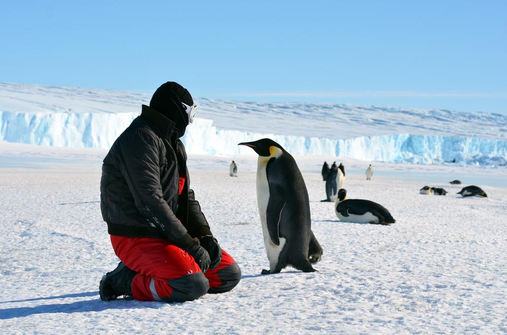 Люди побывали на большей части Антарктиды