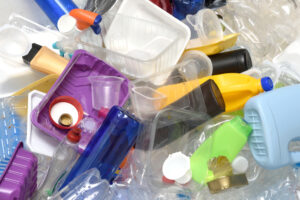 Новый вид жука поможет утилизировать пластиковые отходы