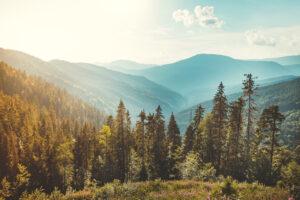 Отпуск в Украине 2020: горы, море или водный курорт?