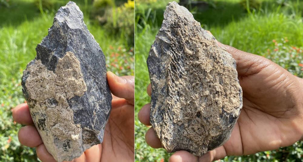 Обнаружен костяной топорик возрастом 1,4 миллиона лет