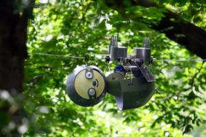 Американские инженеры разработали робота-ленивца