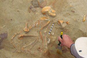 В Древнем Египте обнаружили кладбище домашних животных
