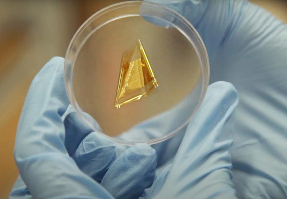В Сингапуре изобрели сверхчувствительную искусственную кожу