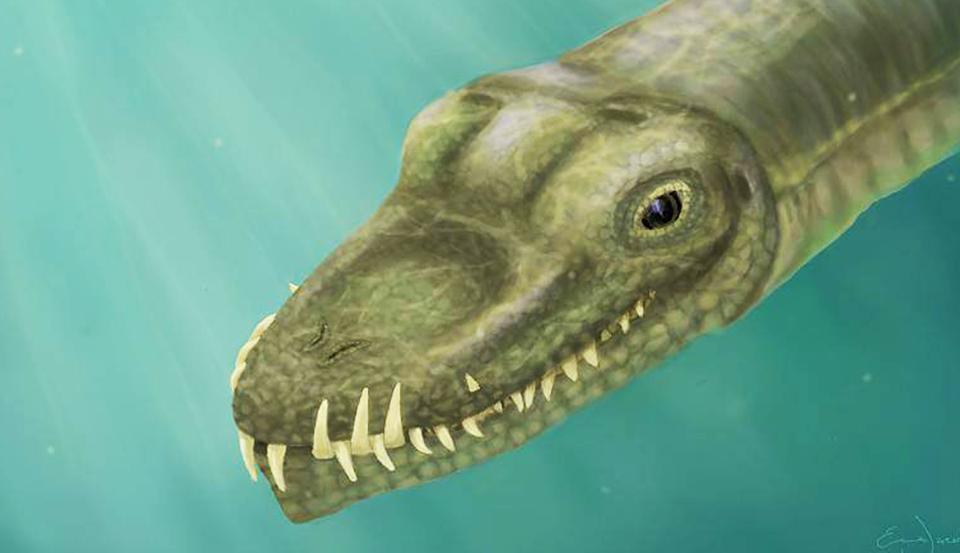 Палеонтологи разгадали загадку древнего монстра с длинной шеей