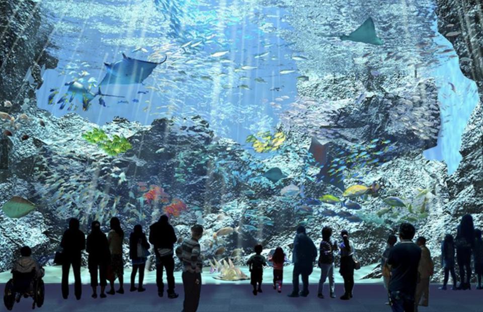 На Тайване открыли новый туробъект: великолепный аквариум