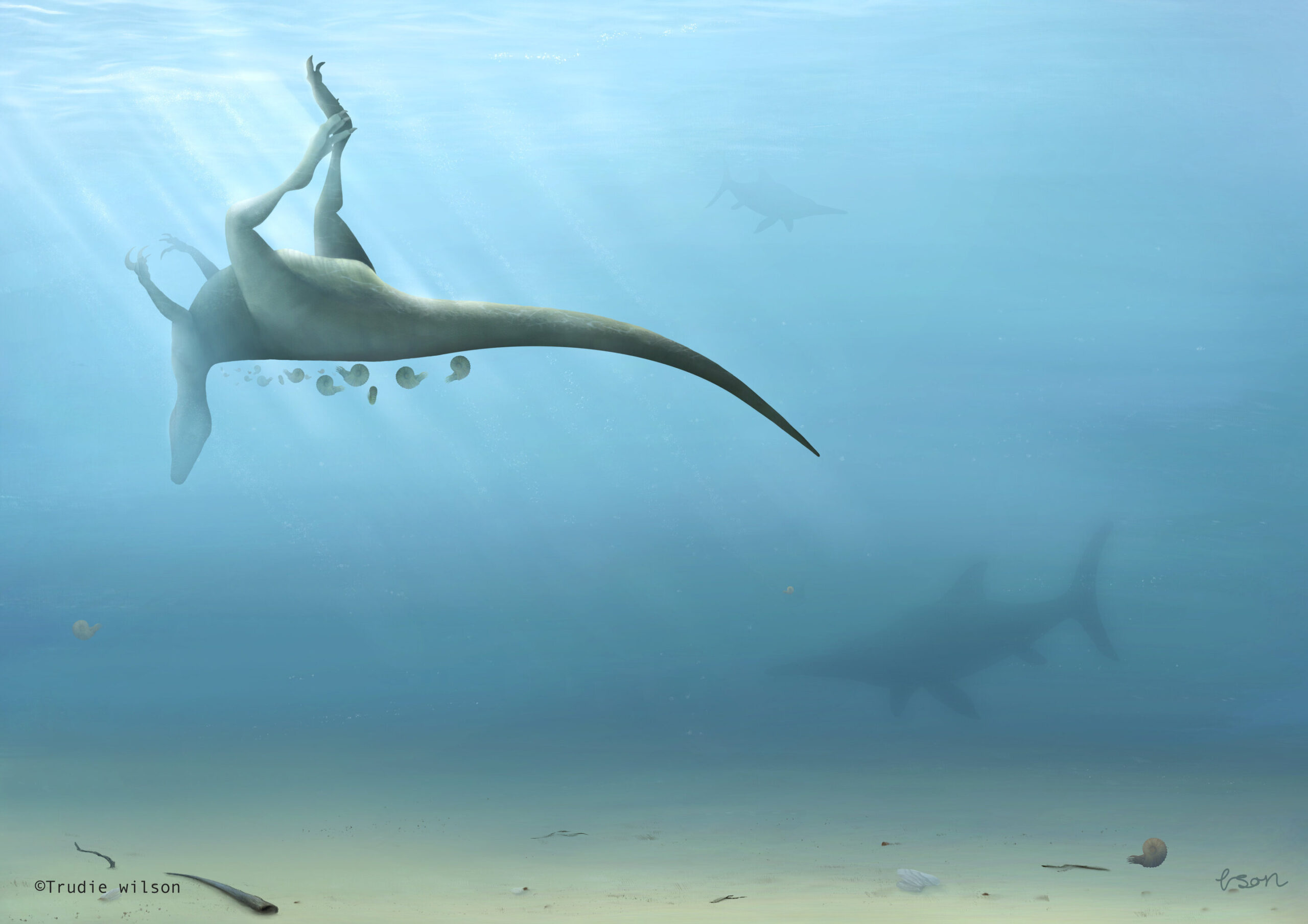 Палеонтологи обнаружили в Англии новый вид динозавра, родственный тираннозавру.Вокруг Света. Украина