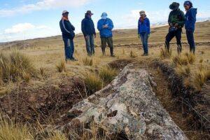 10 млн лет назад на месте современных пустынь в Андах росли леса