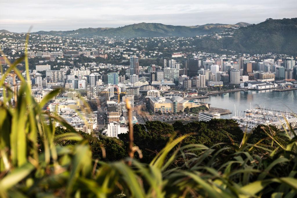 В Новой Зеландии уже 100 дней никто не заражался коронавирусом
