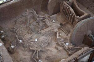 В Китае восстановили роскошную колесницу из древней гробницы