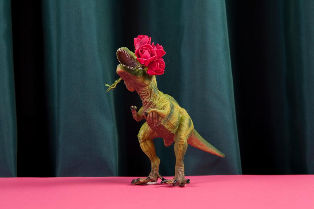 Как у динозавров отличить самца от самки.Вокруг Света. Украина